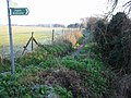 Looking E along bridleway to Ham - geograph.org.uk - 638107.jpg