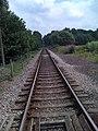 Looking east along Nene Valley railway. - panoramio.jpg