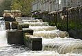 Lopwell Dam fish ladder.jpg