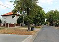 Losiná, side street.jpg