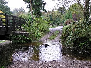 English: Lover's Retreat, Omagh A dog has a qu...