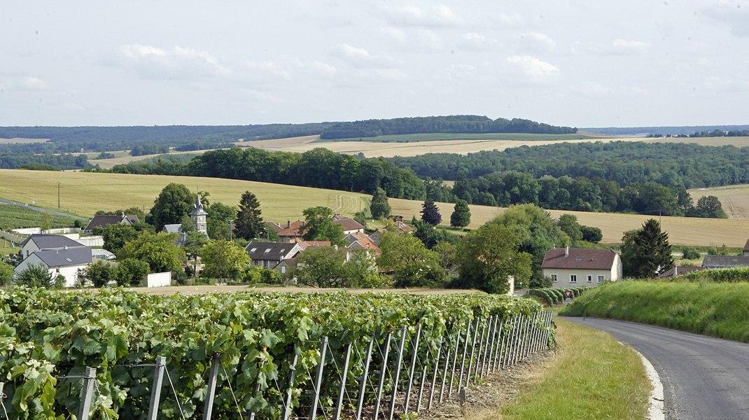 Le village de Méry-Prémecy vue vers la vallée.
