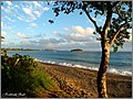 MELE BAY - The Beaches - panoramio.jpg