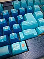 MNACTEC keyboards (31123478715).jpg