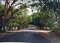 Magway - Natmauk Road.jpg