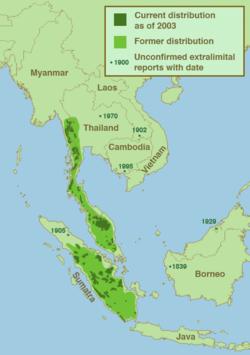 Map of Malayan tapir distribution in the wild, data circa 2003
