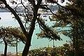 Manacor - Porto Cristo (Avingua de Joan Amer) 04 ies.jpg