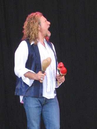 Maraca - Image: Maracas player at Bonnaroo 2008 festival