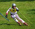 Marcus Peschek Grass Skiing World Championships 2009 Giant Slalom.jpg
