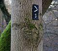 Markierung Winkel drei des Kölner Eifelvereins.jpg