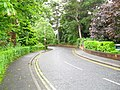 Marlborough Park South, Belfast - geograph.org.uk - 1459672.jpg