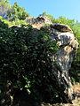 Masso della gonfolina 03.JPG