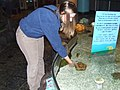 Me at the touch tank (87299547).jpg