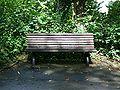 Meinerzhagen - Stadtpark 02 ies.jpg