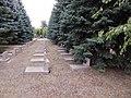 Memorial Cemetery on Second City Cemetery, Kharkiv 2019 (117).jpg