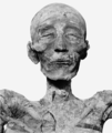 Merneptah mummy head (cropped).png