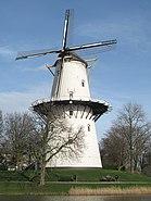 Middelburg, molen de Hoop RM29653 foto7 2014-02-23 15.21