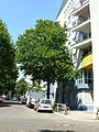 MoabitAgricolastraße-1.jpg