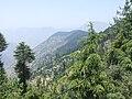 Mohni, Himachal Pradesh 175123, India - panoramio.jpg