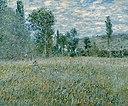Monet - The Meadow, 1879.jpg
