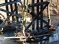 Monroe County - Victor Pike - abandoned railway - trestle - P1120765.JPG