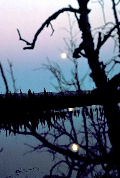 File:Moon in dawn reflection on lake scenic.jpg