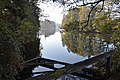 Moosburg Mitterteich Herbststimmung 02112014 534.jpg