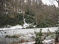 Morralee Tarn, Allen Banks (NT) - geograph.org.uk - 1725358.jpg