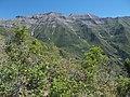Mount Timpanogos - panoramio.jpg