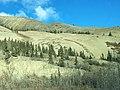 Mountain Sheep Herd (22527049615).jpg
