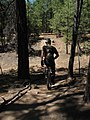 Mountain unicycling 1503646673 6a286528c2 o.jpg