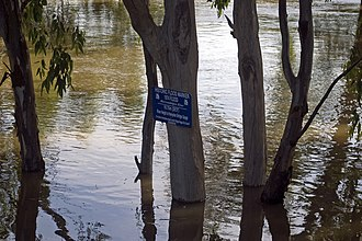 Murrumbidgee River - Murrumbidgee River in major flood in December 2010 and flood marker showing the height of the 1974 floods in Wagga Wagga