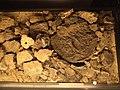 Museum of Ancient Masovian Metallurgy in Pruszków (piecowisko rekonstrukcja).jpg