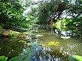 Närheten av utloppet där Lövstaholms-ån rinner ut i Mälaren - panoramio (3).jpg