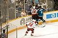 NHL (257687233).jpg