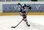 NLA, Rapperswil-Jona Lakers vs. Genève-Servette HC, 14th November 2014 89.JPG