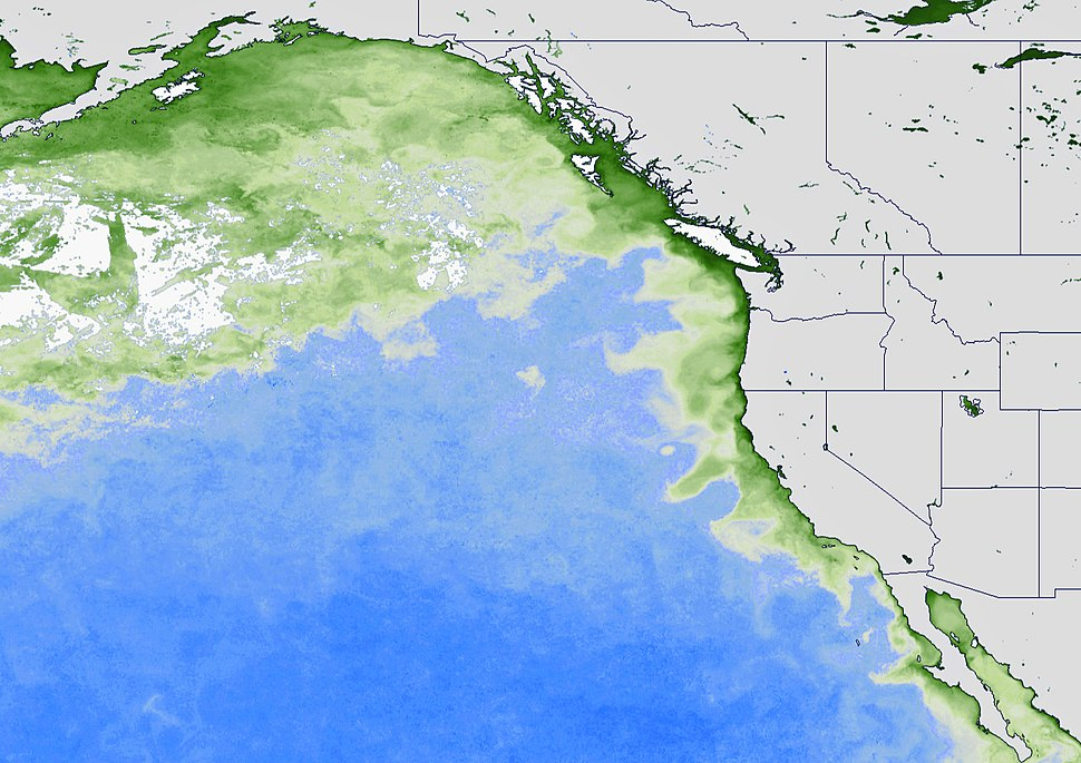 NOAA Pacific coast 2015