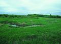 NRCSSD01012 - South Dakota (6043)(NRCS Photo Gallery).tif