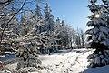 Na turystycznym szlaku - panoramio - grzegorzsenkowski.jpg