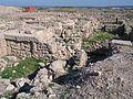 Nahsholim-Tel-Dor-3003.jpg