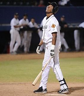 Napoleón Calzado Dominican Republic baseball player