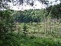 Naturschutzgebiet Teufelssee (2015-08-18 a).jpg