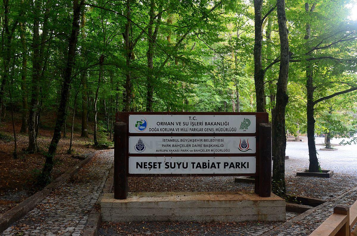 Fatih Ormanı