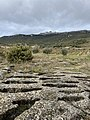 Necropolis of Remelluri, Labastida.jpg