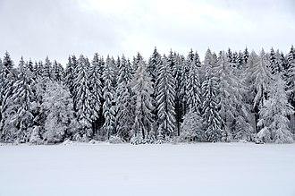 Swabian Jura - Snowy landscape on Swabian alps (2019)