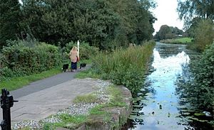 Shrewsbury Canal - The canal in Newport