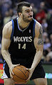 Nikola Pekovic Timberwolves.jpg
