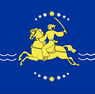 Nikopol flag.png