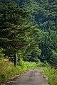 Nishihirayama Ichinowatari, Hirosaki-shi, Aomori-ken 036-8134, Japan - panoramio (1).jpg