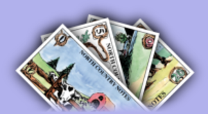 Jason Rohrer - North Country Notes, a local currency proposed also by Jason Rohrer (2005)